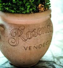rosenstein-negyedik.jpg